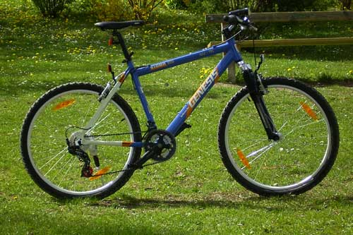 Mein Mountainbike (Archivbild)