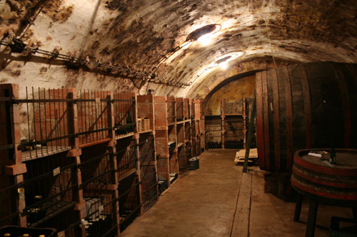 Visiting a wine cellar